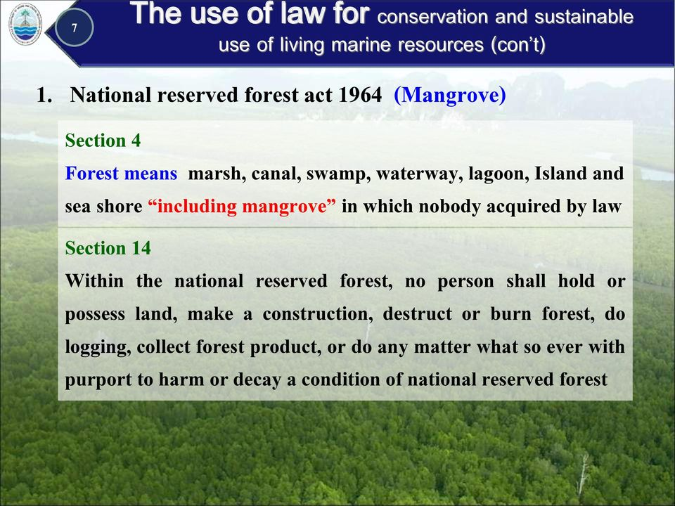 forest, no person shall hold or possess land, make a construction, destruct or burn forest, do logging, collect