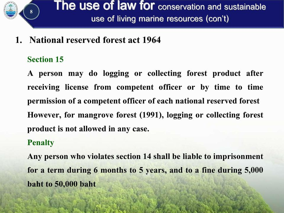 However, for mangrove forest (1991), logging or collecting forest product is not allowed in any case.
