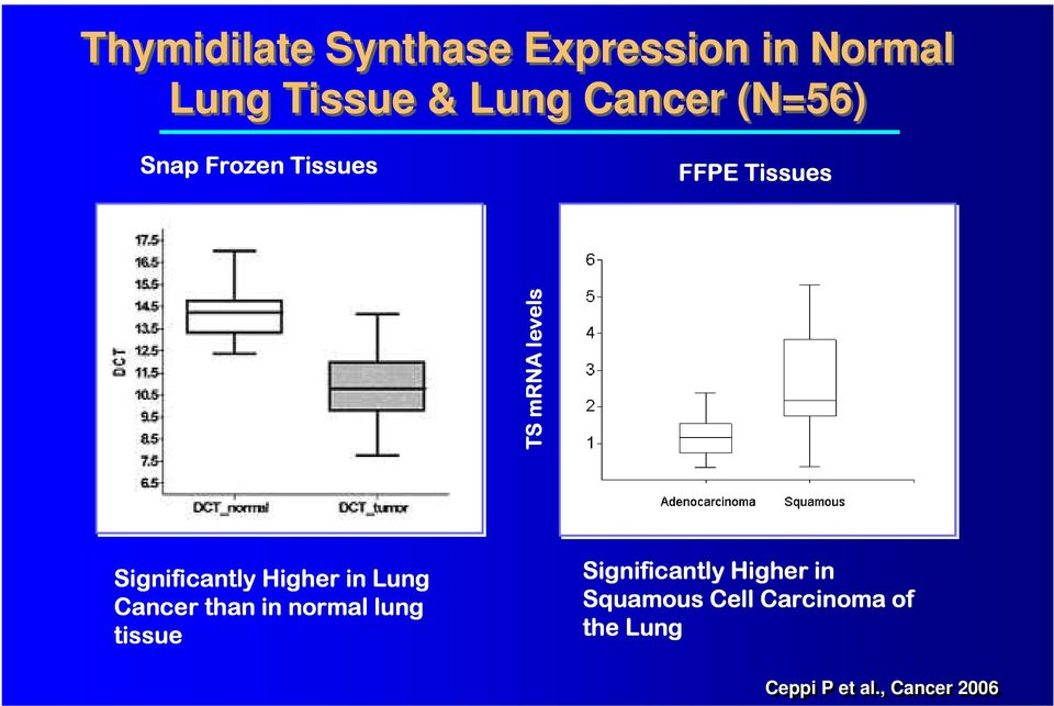 Higher in Lung Cancer than in normal lung tissue Significantly