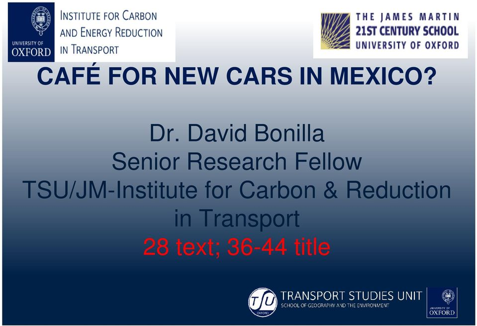 Fellow TSU/JM-Institute for Carbon