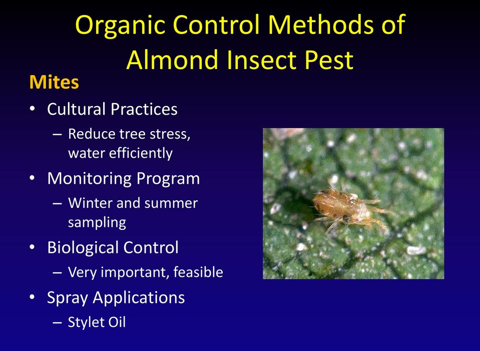 Winter and summer sampling Biological Control Almond