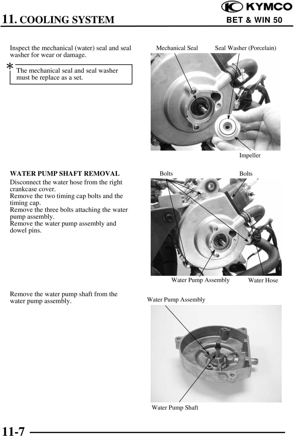 Remove the two timing cap bolts and the timing cap. Remove the three bolts attaching the water pump assembly.