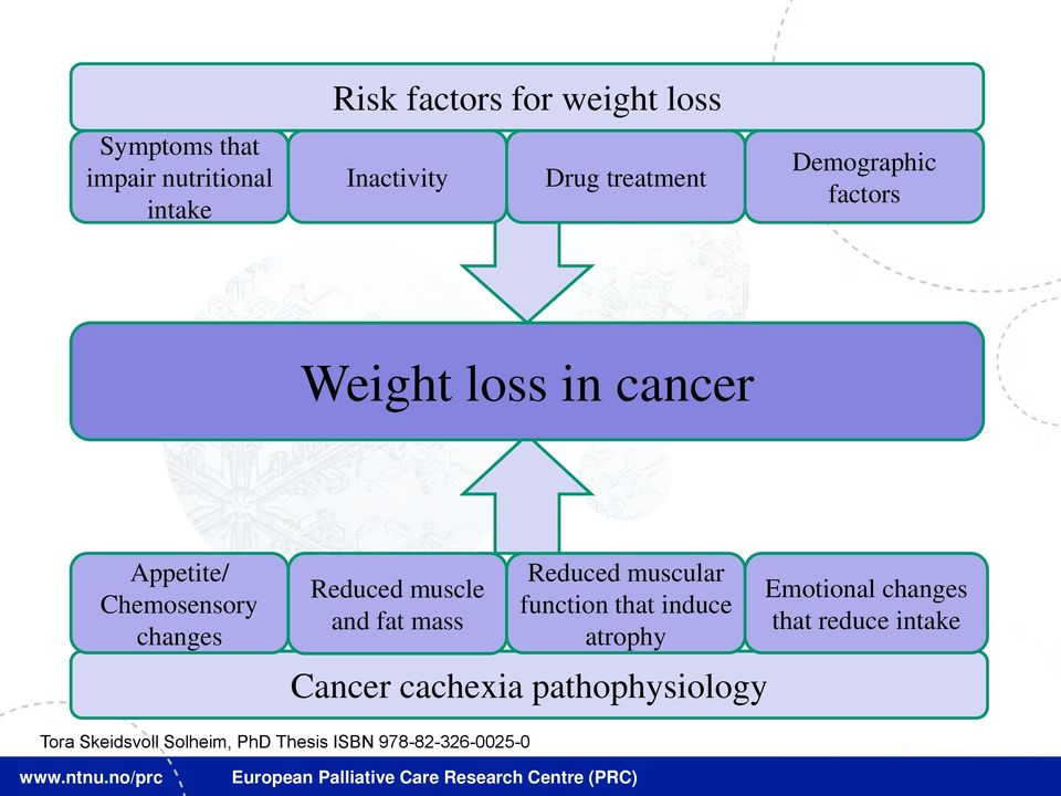 muscle and fat mass Reduced muscular function that induce atrophy Cancer cachexia