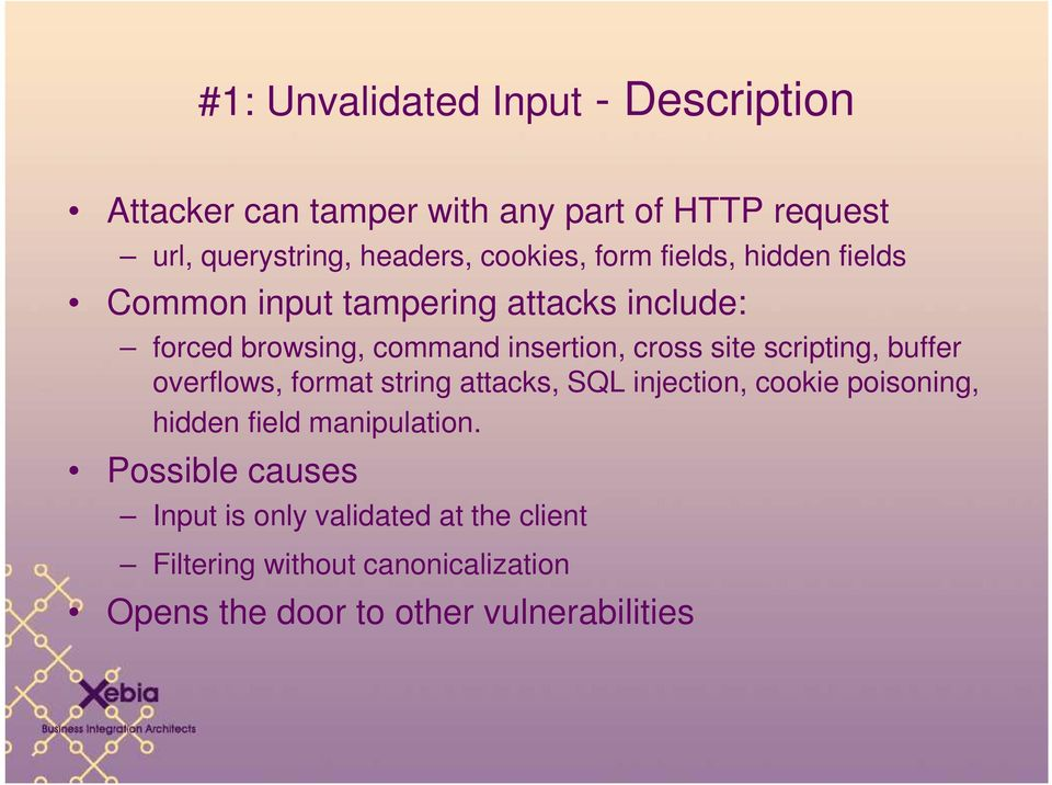 site scripting, buffer overflows, format string attacks, SQL injection, cookie poisoning, hidden field manipulation.