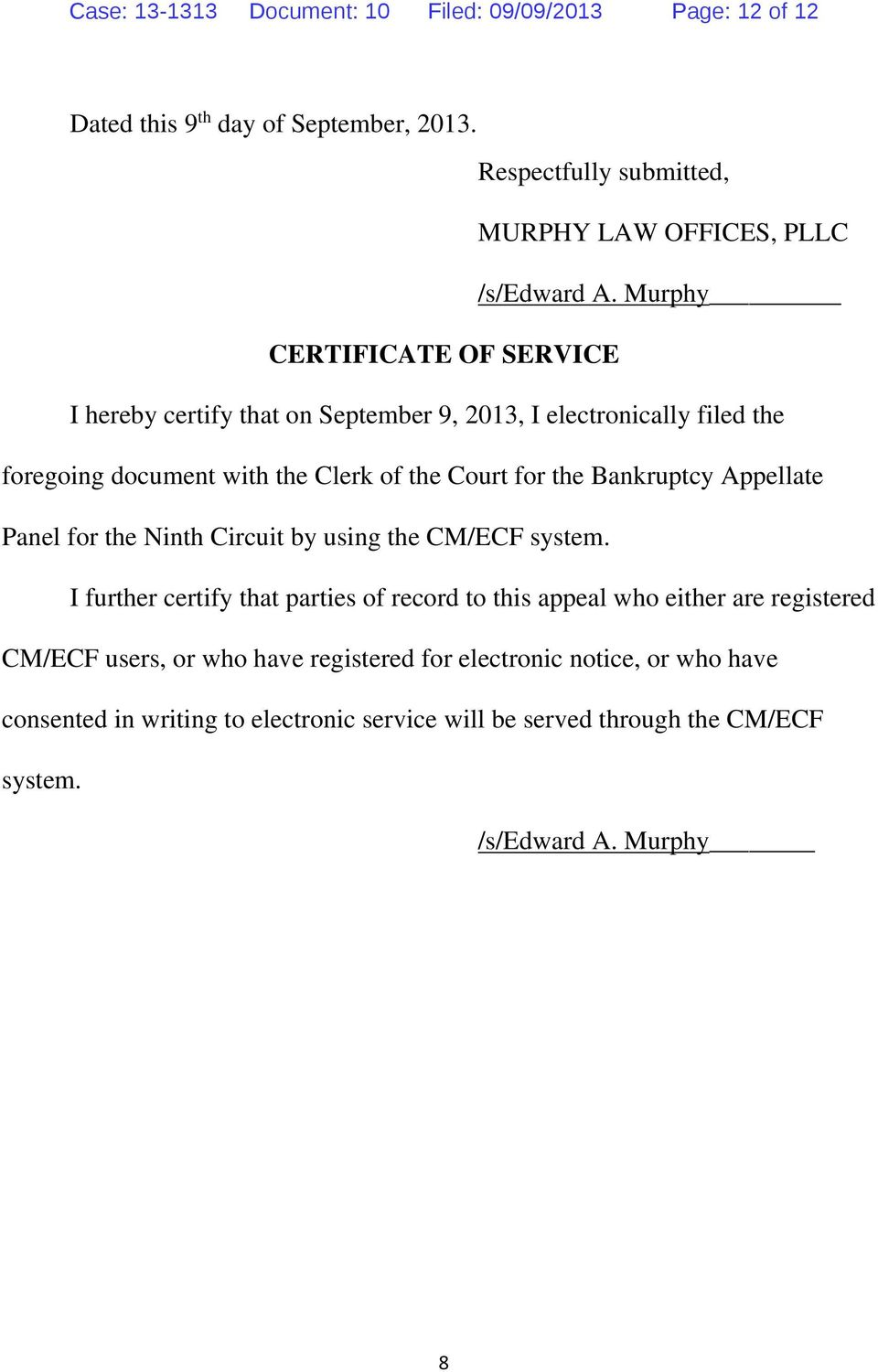 Bankruptcy Appellate Panel for the Ninth Circuit by using the CM/ECF system.