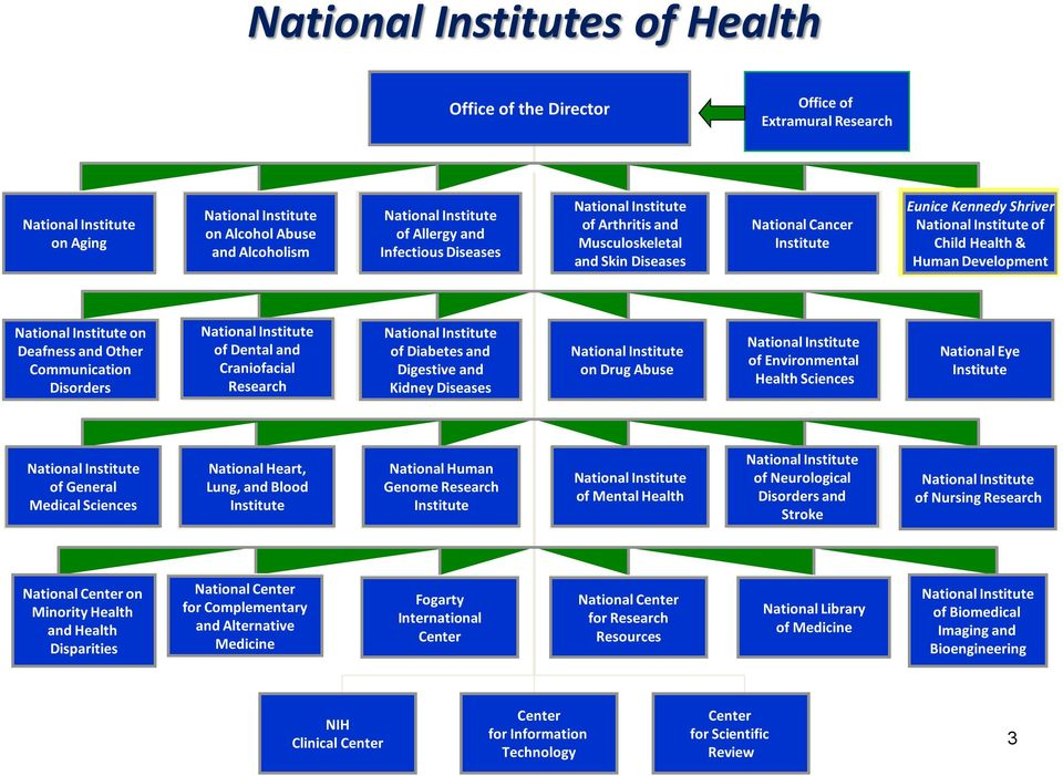 National Institute on Deafness and Other Communication Disorders National Institute of Dental and Craniofacial Research National Institute of Diabetes and Digestive and Kidney Diseases National