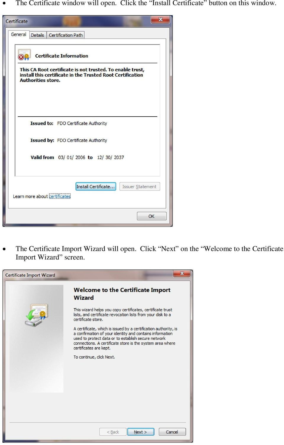window. The Certificate Import Wizard will open.