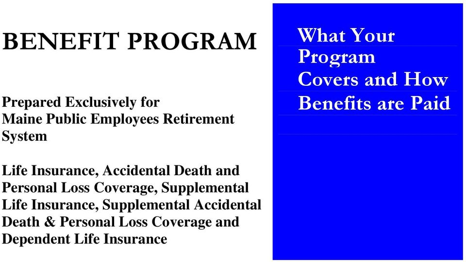 Accidental Death and Personal Loss Coverage, Supplemental Life Insurance,