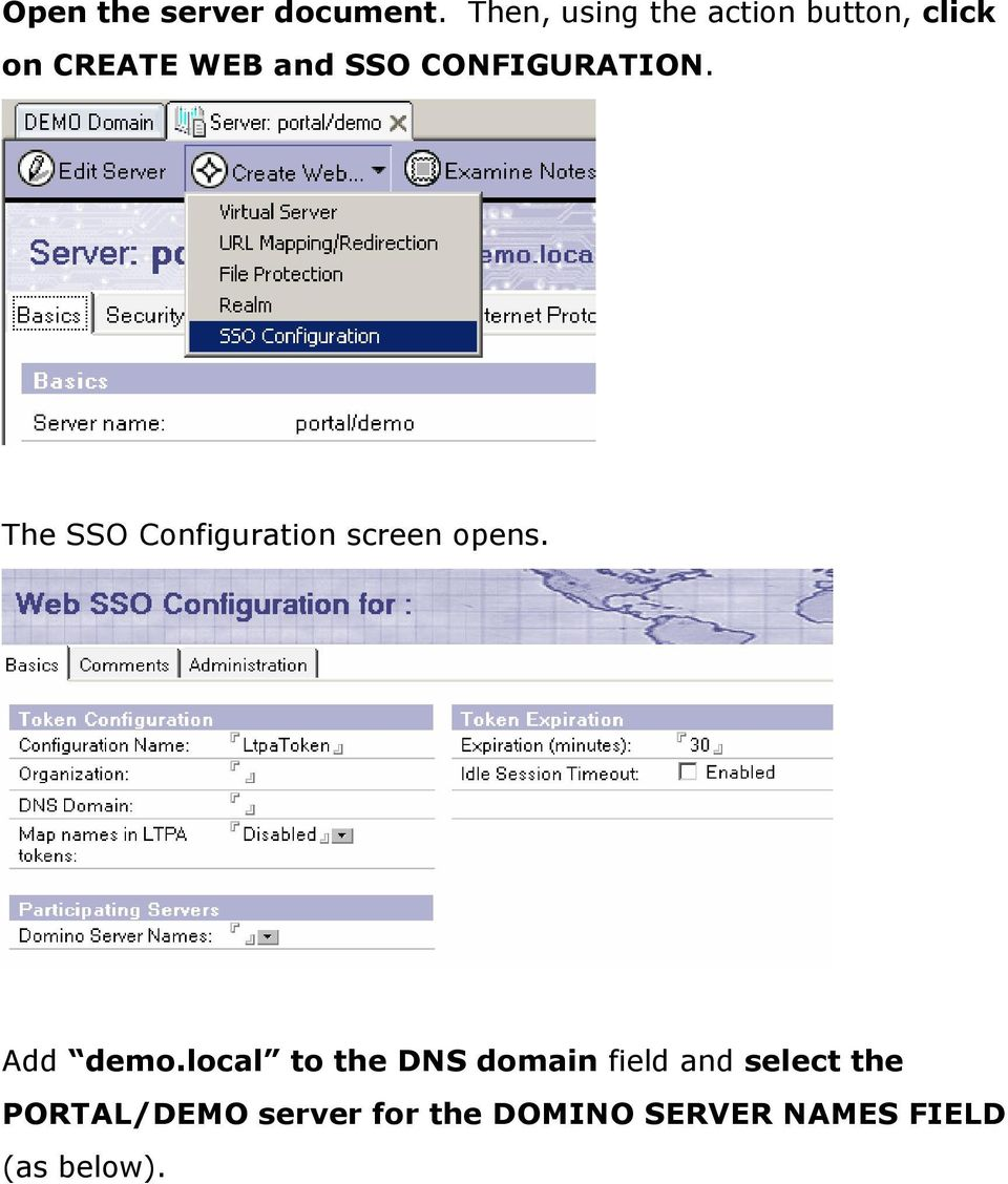 CONFIGURATION. The SSO Configuration screen opens. Add demo.
