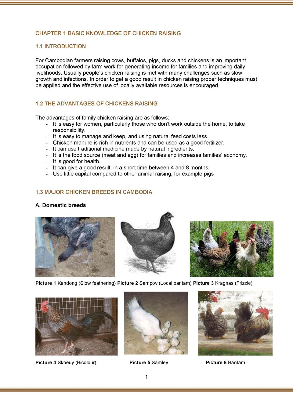 livelihoods. Usually people s chicken raising is met with many challenges such as slow growth and infections.