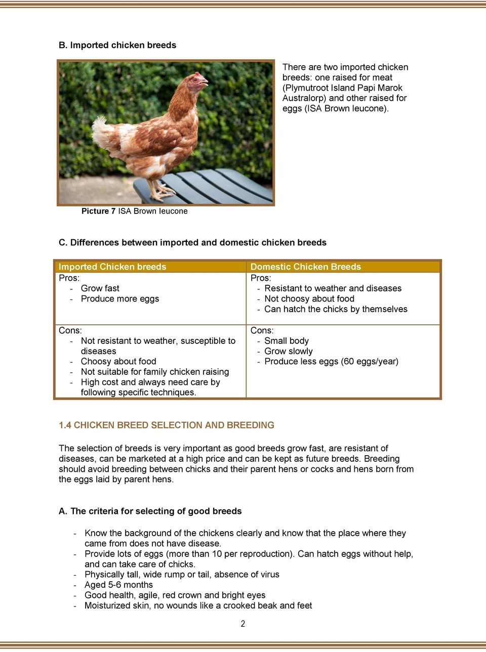 Differences between imported and domestic chicken breeds Imported Chicken breeds Pros: - Grow fast - Produce more eggs Cons: - Not resistant to weather, susceptible to diseases - Choosy about food -