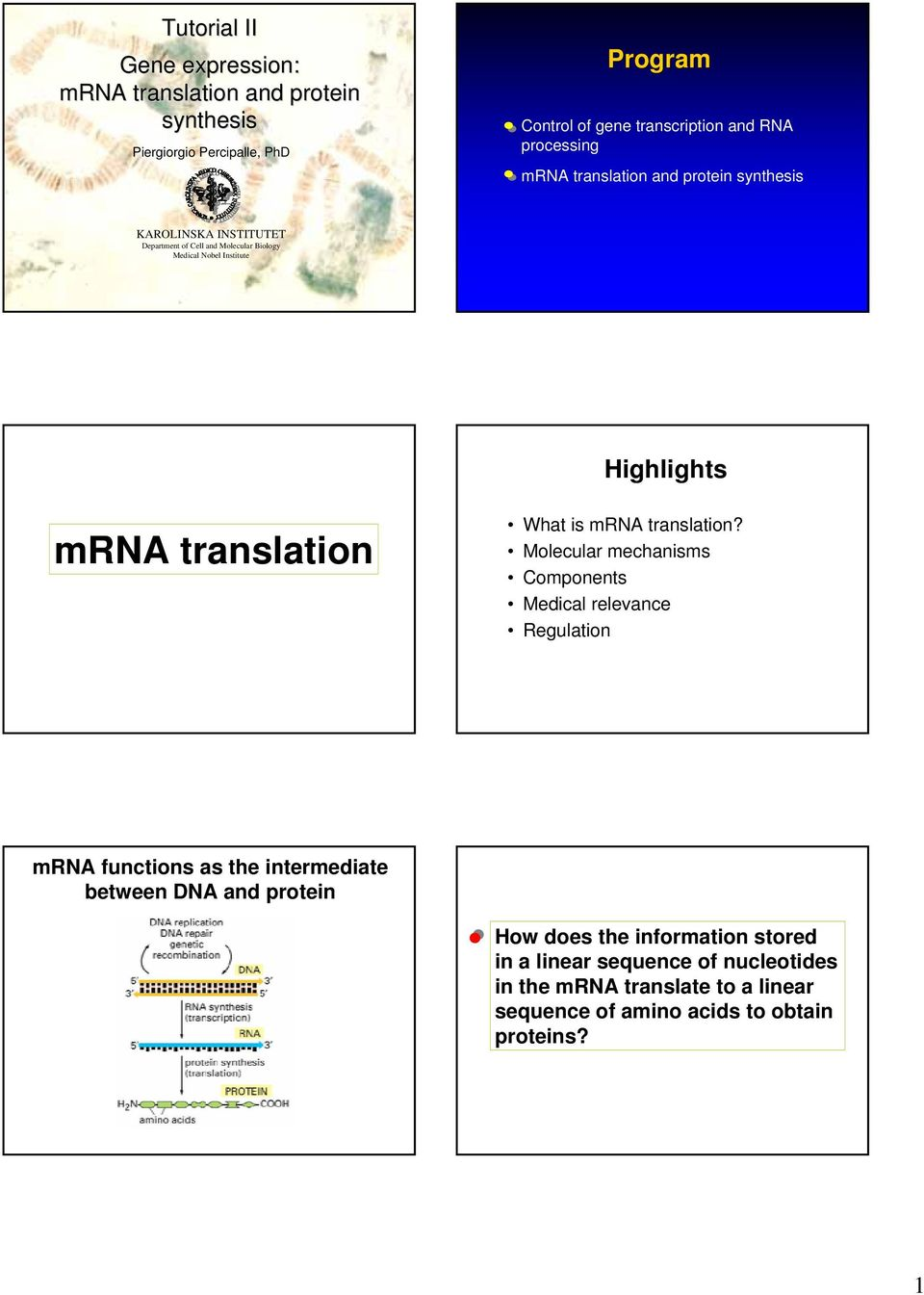 mrna translation What is mrna translation?