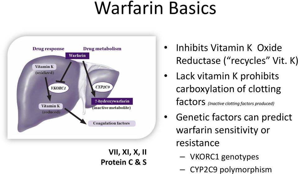 K) Lack vitamin K prohibits carboxylation of clotting factors (Inactive