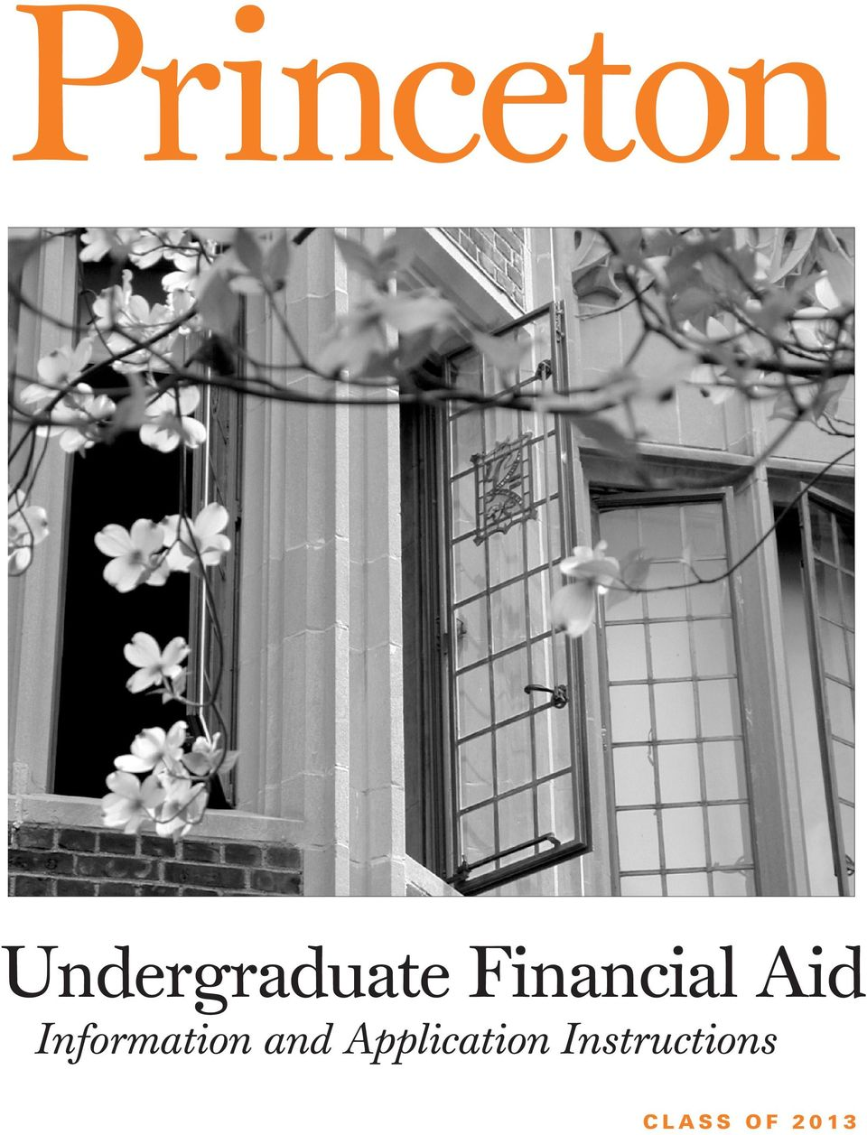 princeton supplement essay