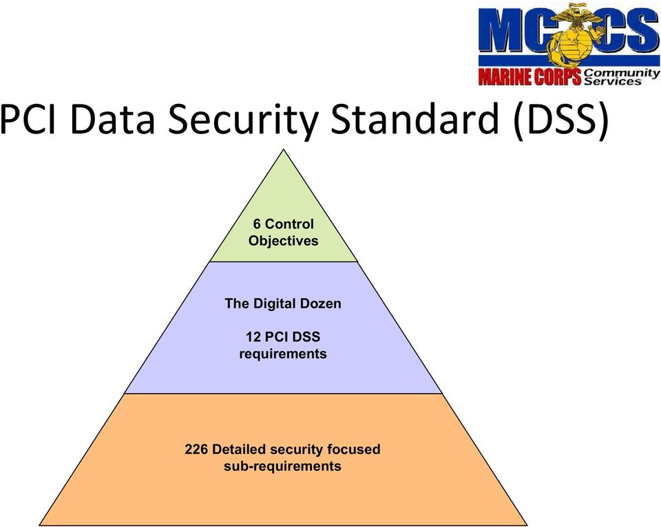 Dozen 12 PCI DSS requirements 226