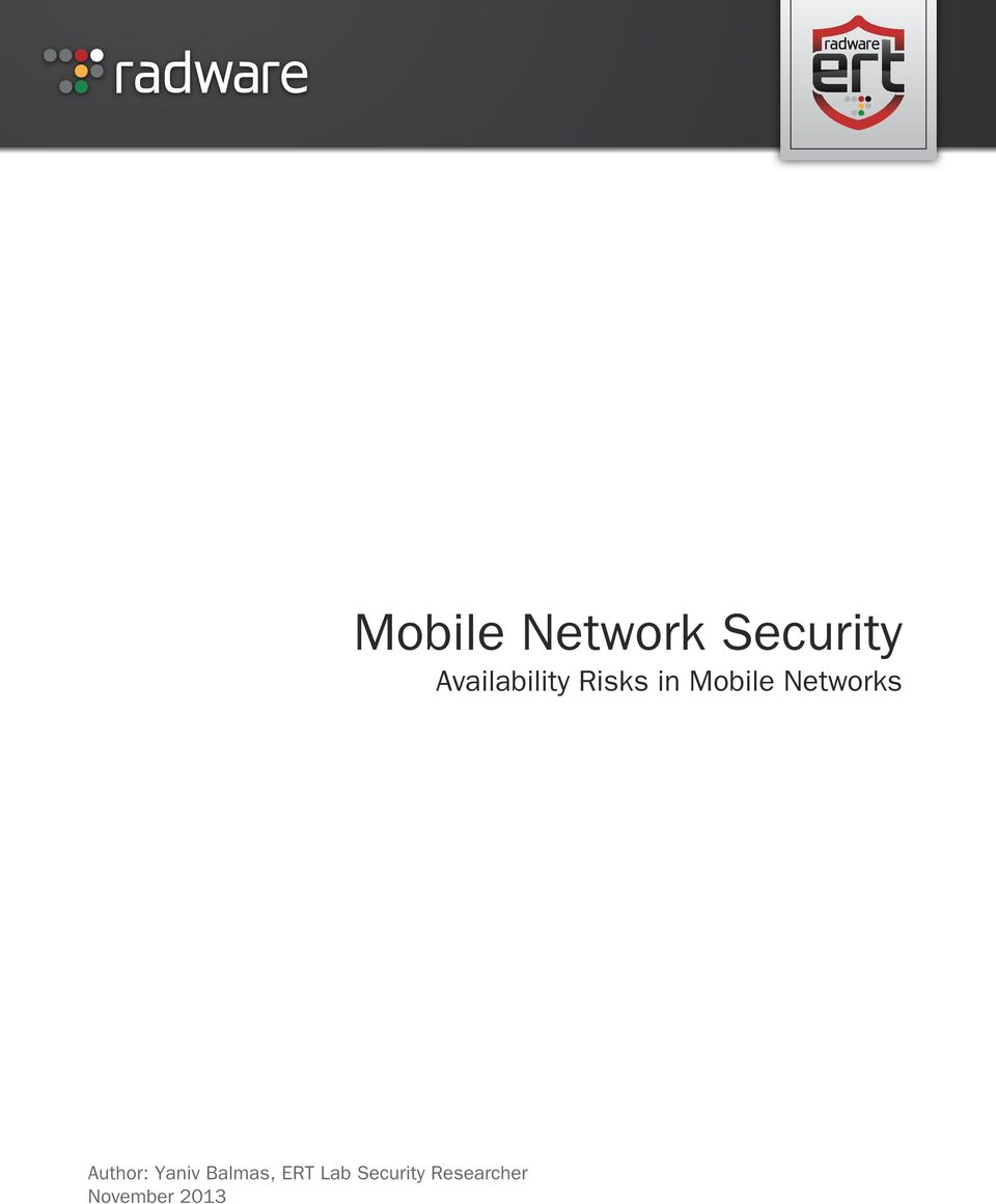 2013 Mobile Network Security