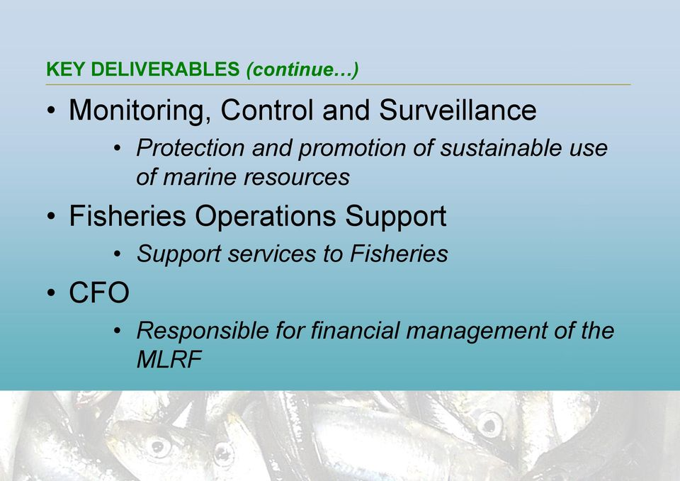 marine resources Fisheries Operations Support CFO Support