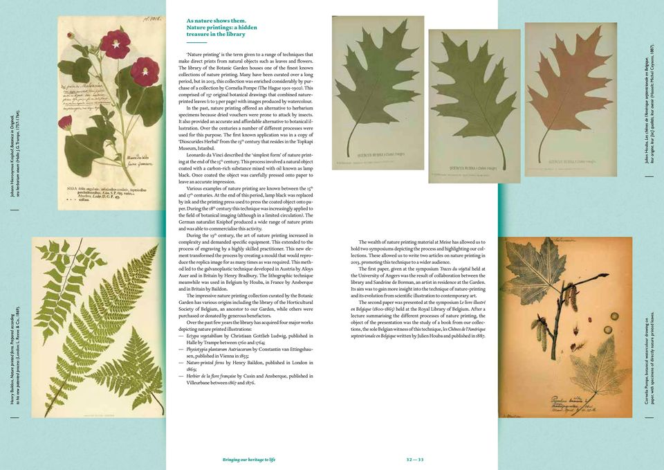 Nature printing is the term given to a range of techniques that make direct prints from natural objects such as leaves and flowers.