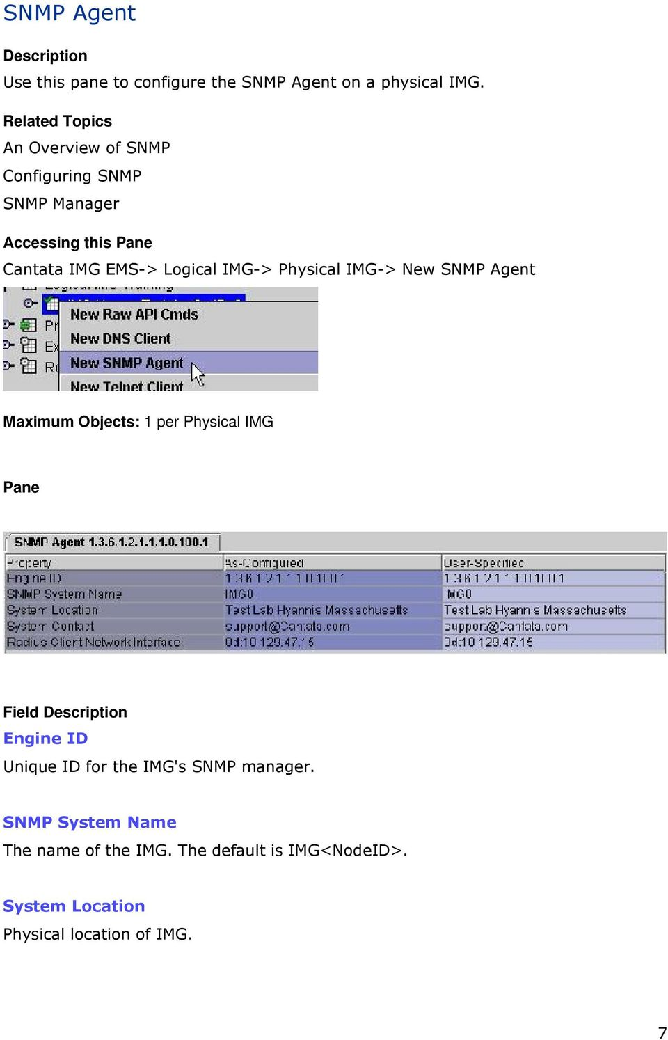 IMG-> Physical IMG-> New SNMP Agent Maximum Objects: 1 per Physical IMG Pane Field Description Engine ID Unique