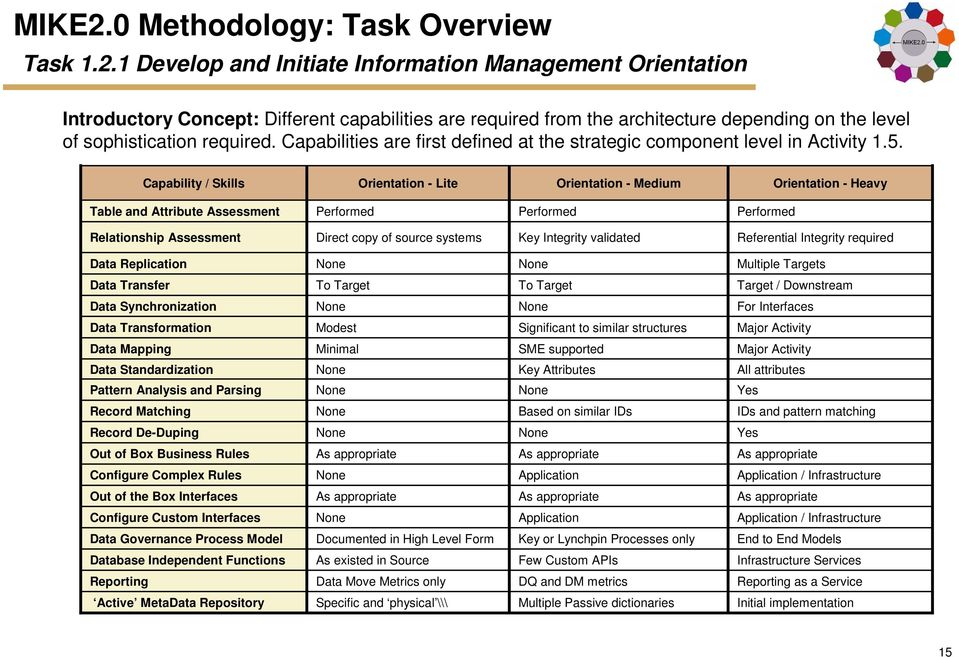 Capability / Skills Orientation - Lite Orientation - Medium Orientation - Heavy Table and Attribute Assessment Performed Performed Performed Relationship Assessment Direct copy of source systems Key