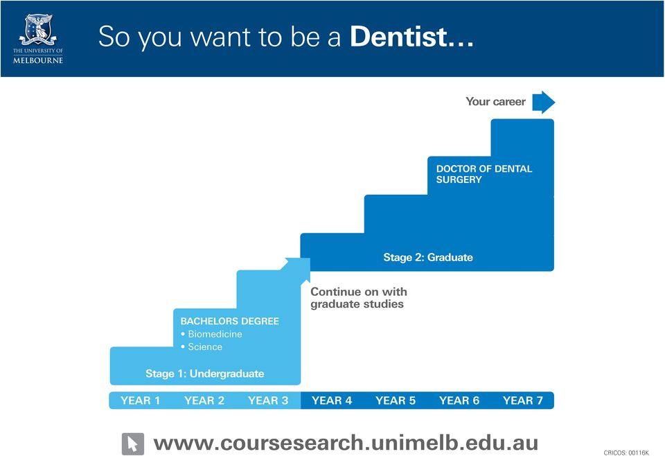 So you want to be a Dentist - PDF