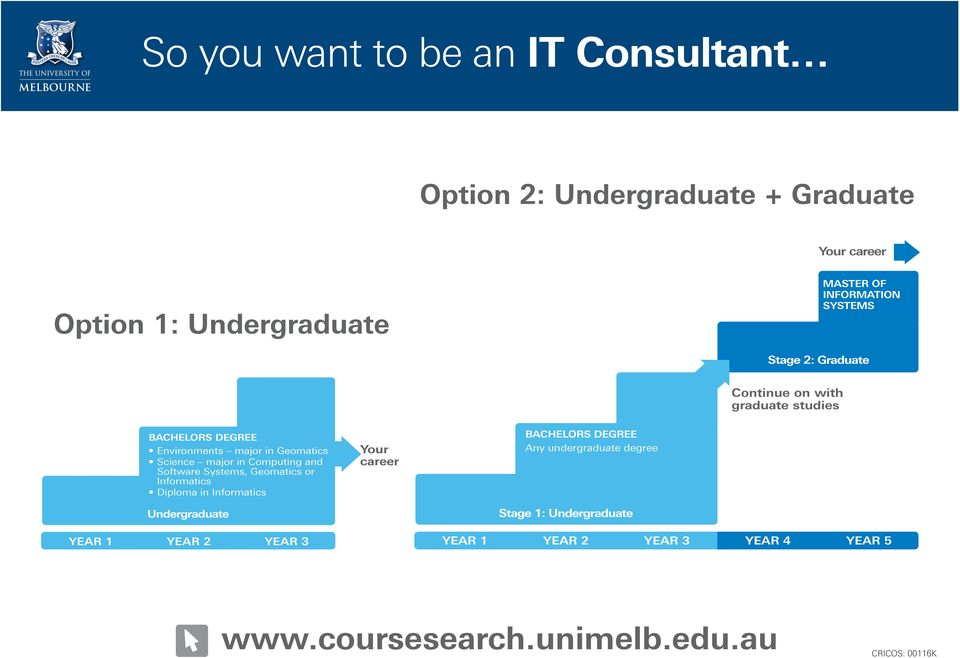 major in Computing and Software Systems, Geomatics or Informatics Diploma in