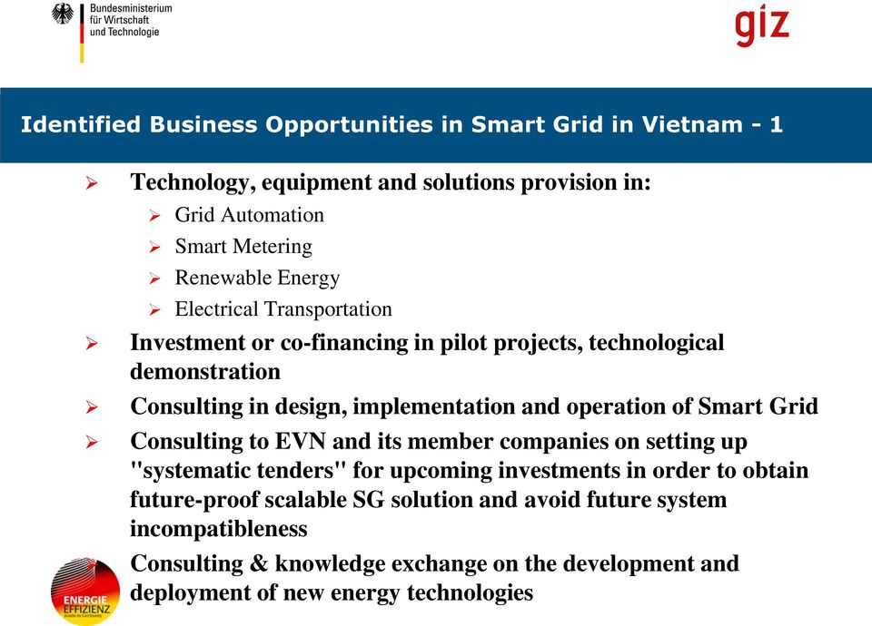 "operation of Smart Grid Consulting to EVN and its member companies on setting up ""systematic tenders"" for upcoming investments in order to obtain"