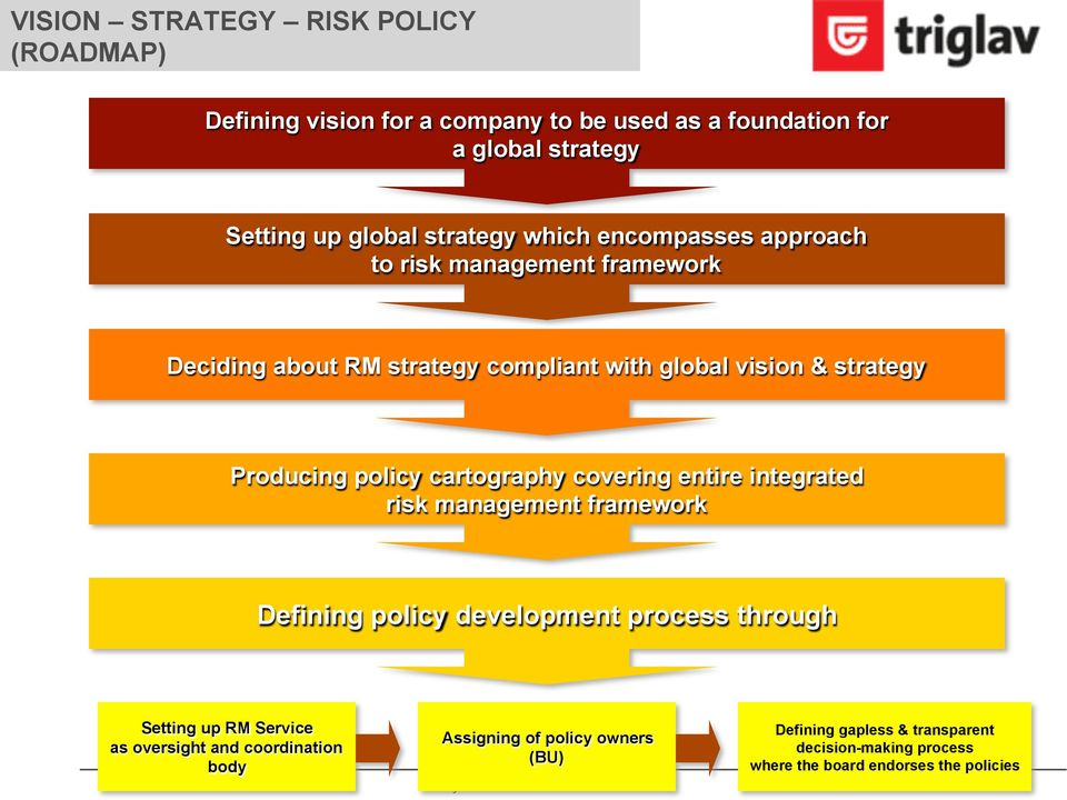 cartography covering entire integrated risk management framework Defining policy development process through Setting up RM Service as oversight