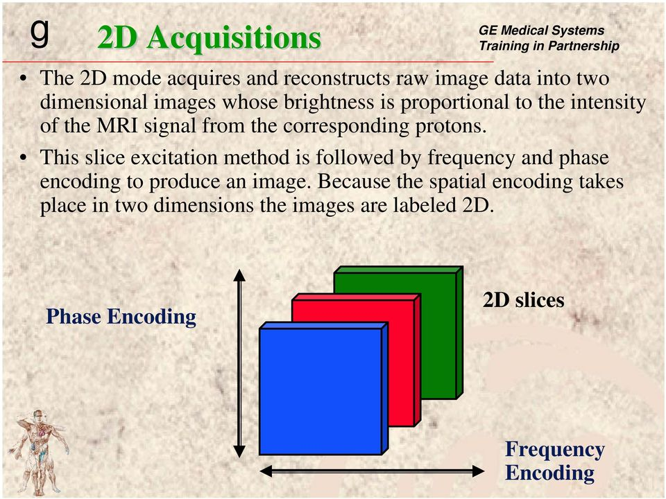 This slice excitation method is followed by frequency and phase encoding to produce an image.