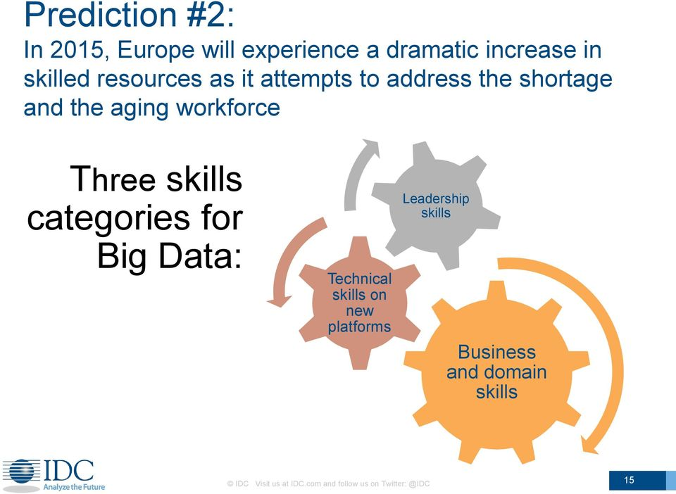 skills categories for Big Data: Technical skills on new platforms Leadership