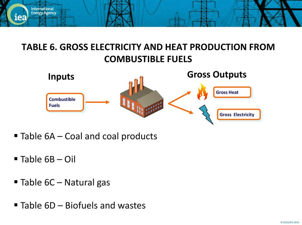 FUELS Inputs Gross Outputs Combustible Fuels Gross Heat