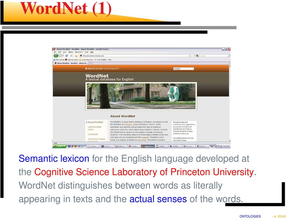 developed at the Cognitive Science Laboratory of Princeton