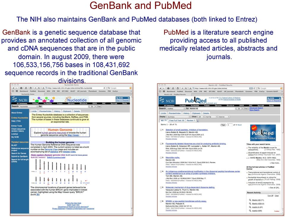 In august 2009, there were 106,533,156,756 bases in 108,431,692 sequence records in the traditional GenBank divisions.