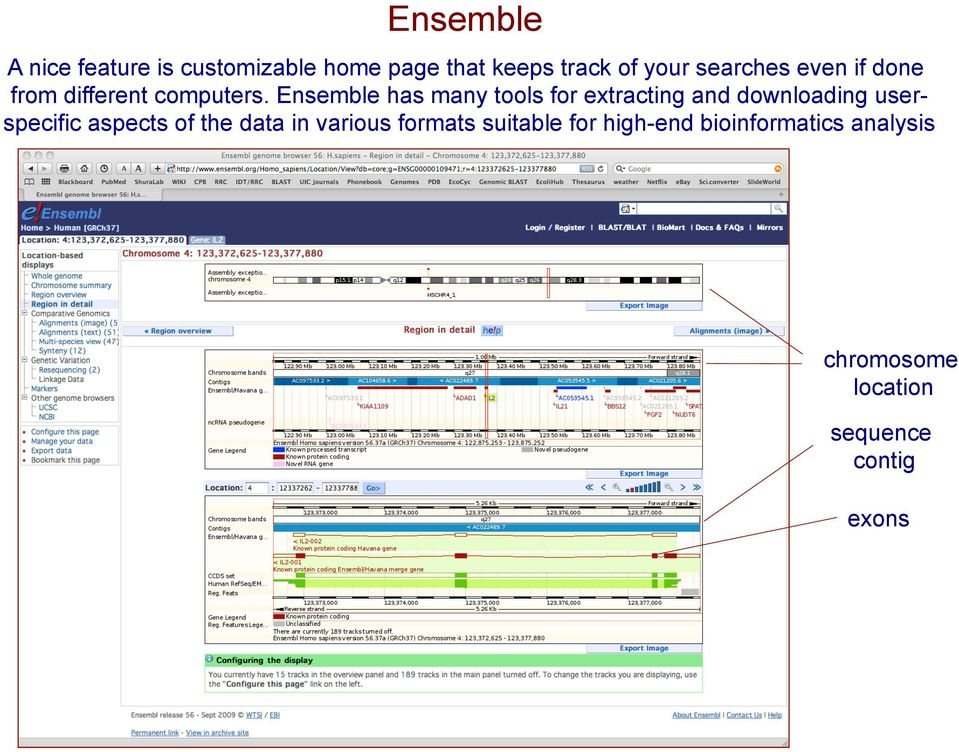 Ensemble has many tools for extracting and downloading userspecific aspects of