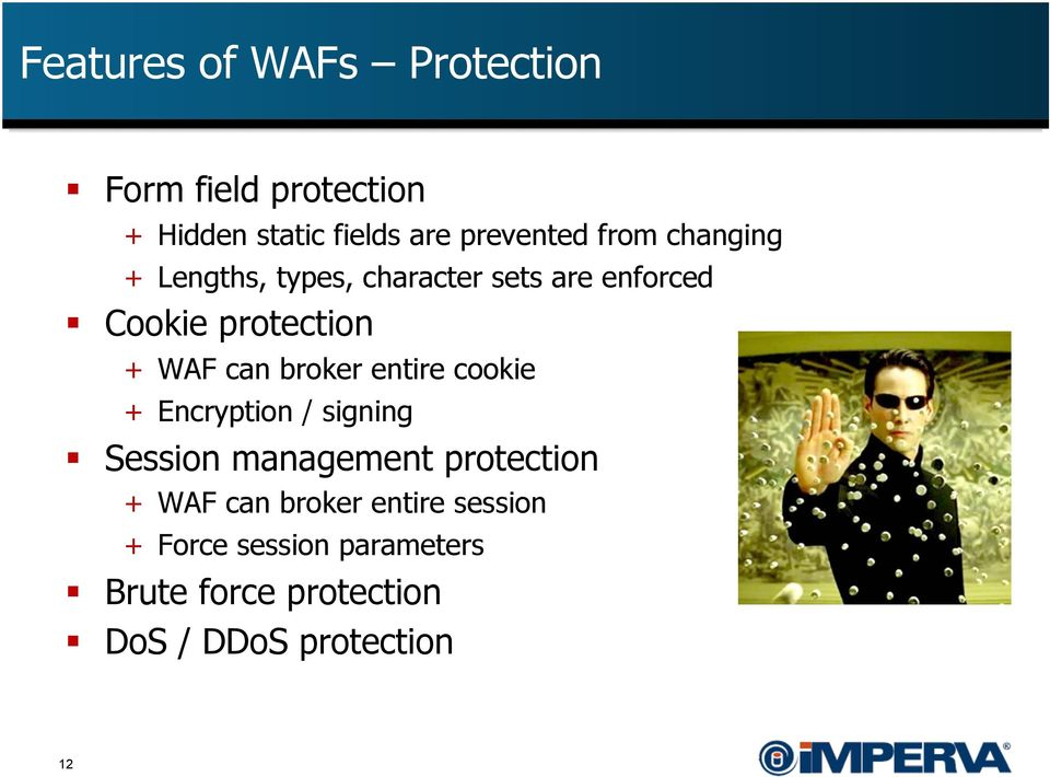 broker entire cookie + Encryption / signing Session management protection + WAF can