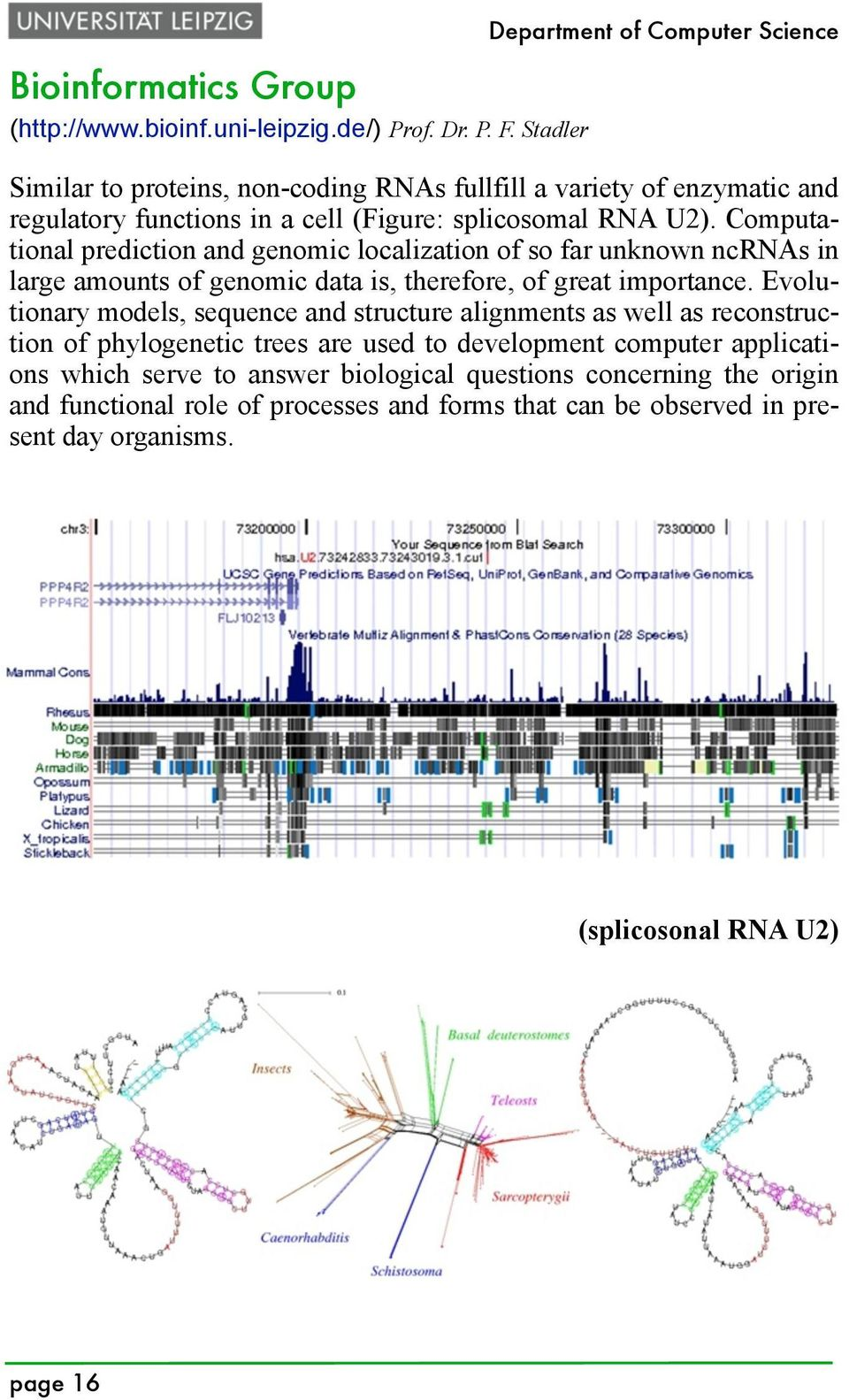 Computational prediction and genomic localization of so far unknown ncrnas in large amounts of genomic data is, therefore, of great importance.