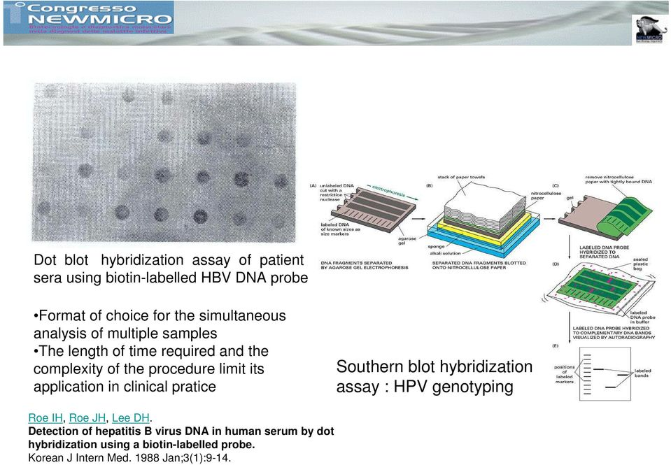 application in clinical pratice Southern blot hybridization assay : HPV genotyping Roe IH, Roe JH, Lee DH.