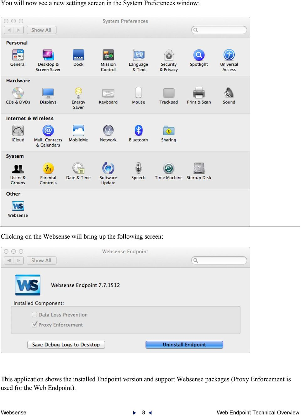 shows the installed Endpoint version and support Websense packages (Proxy