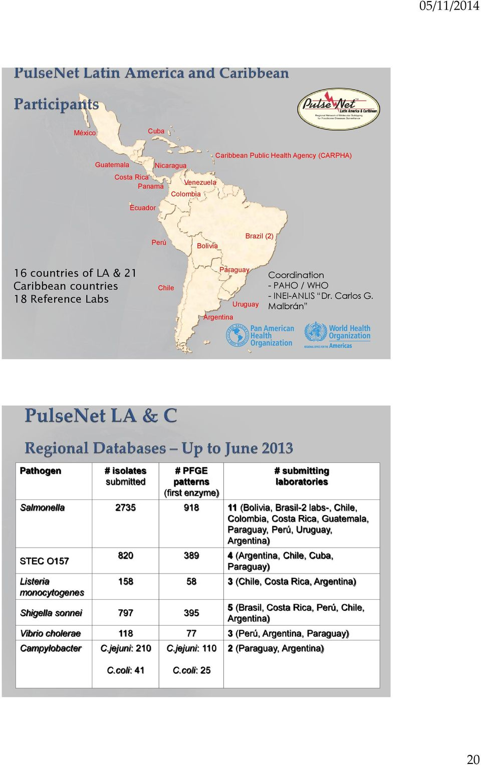 Malbrán Pathogen # isolates submitted # PFGE patterns (first enzyme) # submitting laboratories Salmonella 2735 918 11 (Bolivia, Brasil-2 labs-, Chile, Colombia, Costa Rica, Guatemala, Paraguay, Perú,