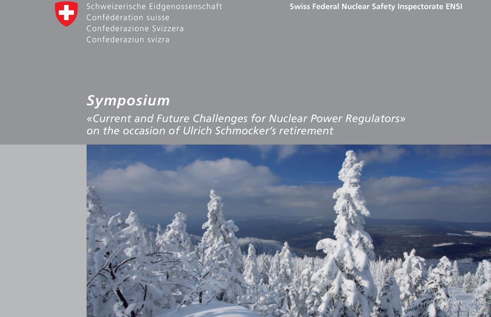 Challenges for Nuclear Power Regulators»