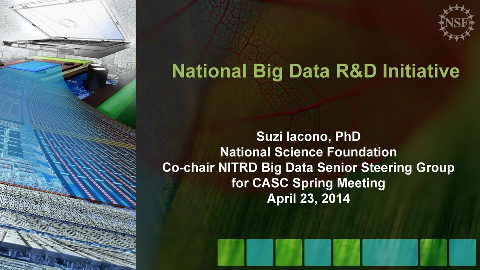Co-chair NITRD Big Data Senior Steering