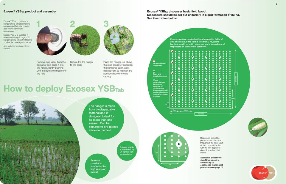 Exosex dispenser basic field layout Dispensers should be set out uniformly in a grid formation of 80/ha. See illustration below: Pheromones are most effective when used in fields of 2 ha and above.
