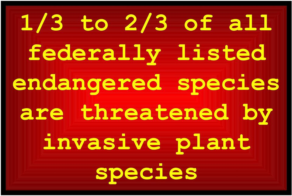 endangered species are