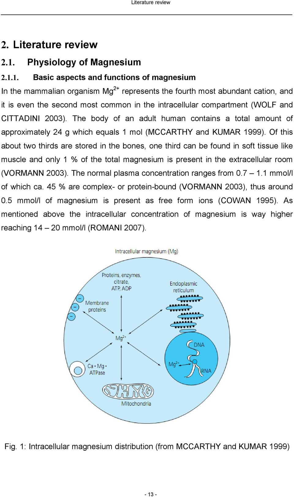 1. Basic aspects and functions of magnesium In the mammalian organism Mg 2+ represents the fourth most abundant cation, and it is even the second most common in the intracellular compartment (WOLF