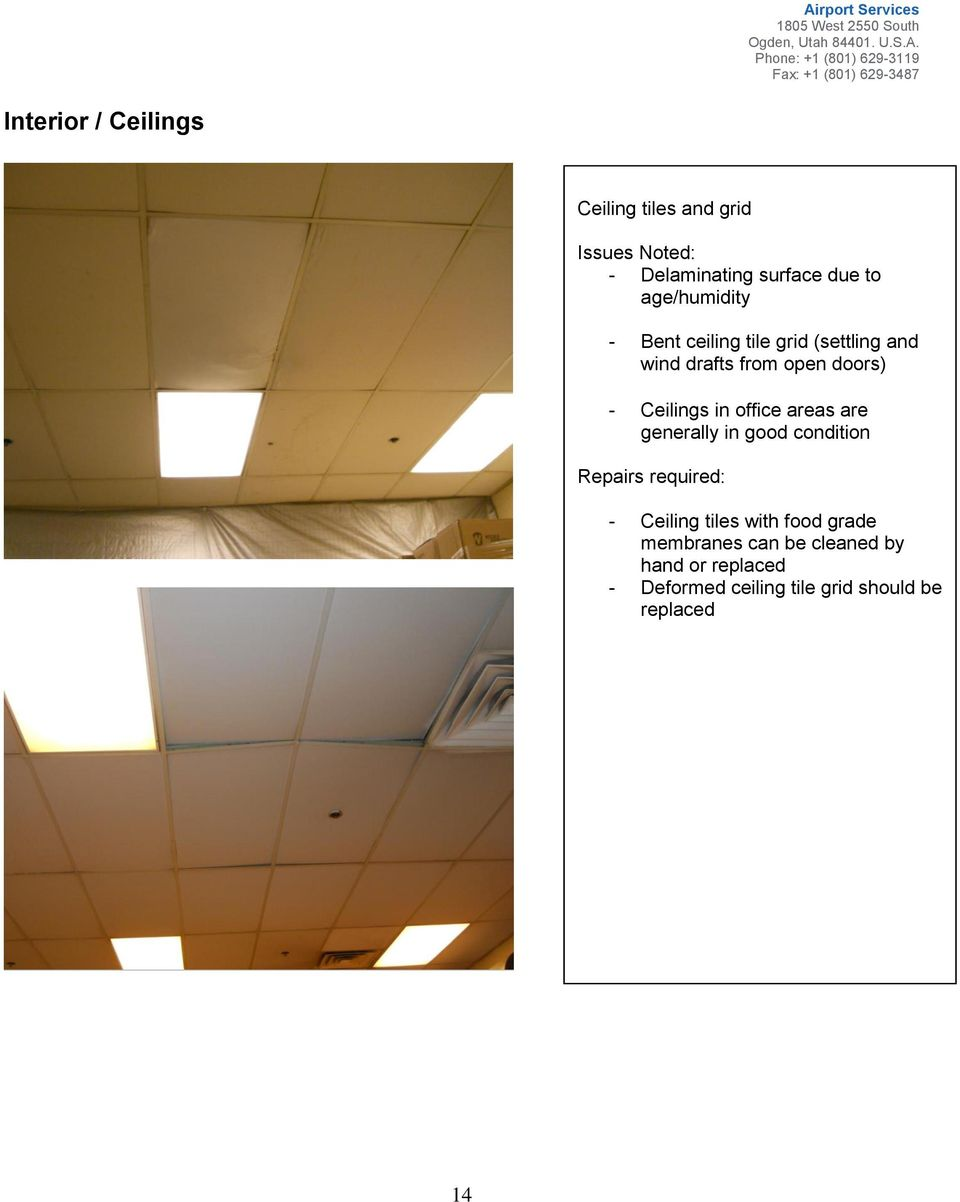 Ceilings in office areas are generally in good condition - Ceiling tiles with food