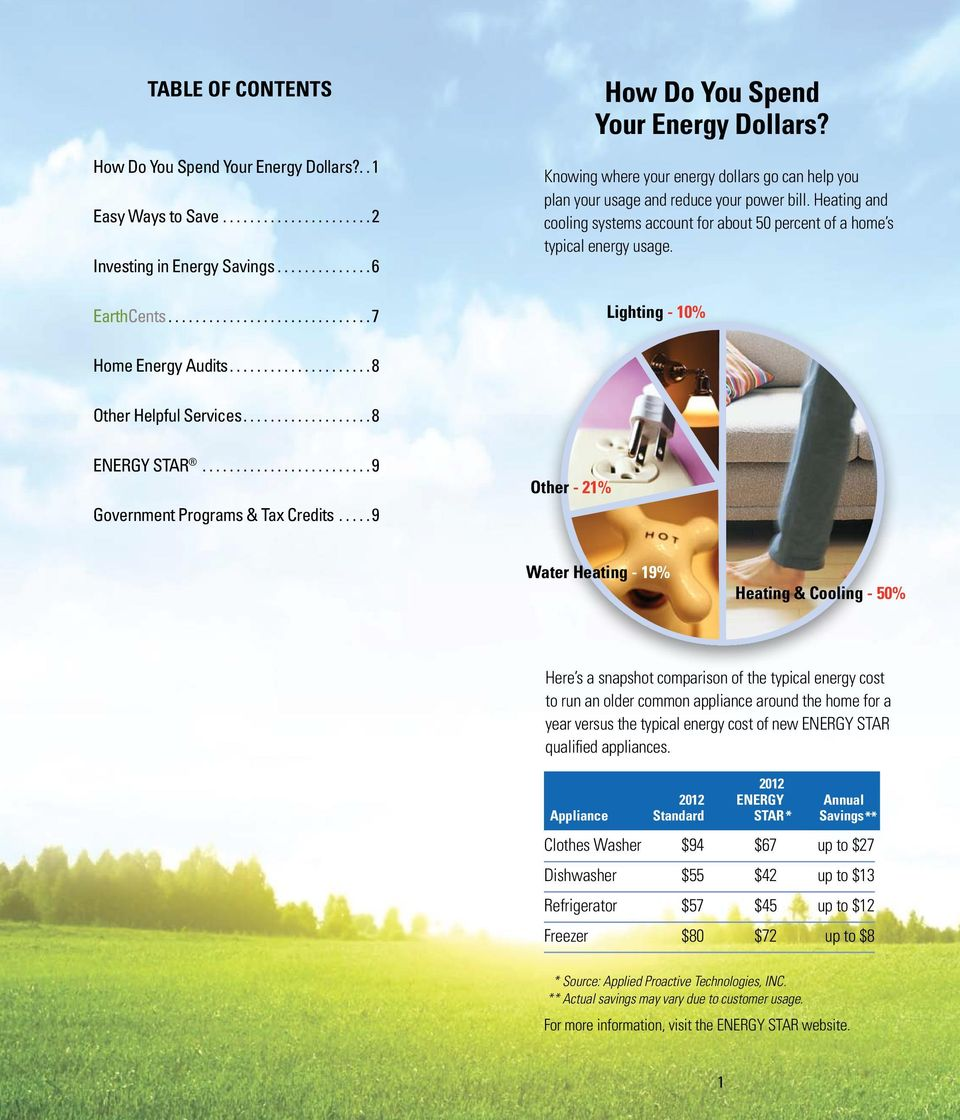 Lighting - 10% Home Energy Audits... 8 Other Helpful Services... 8 ENERGY STAR... 9 Government Programs & Tax Credits.