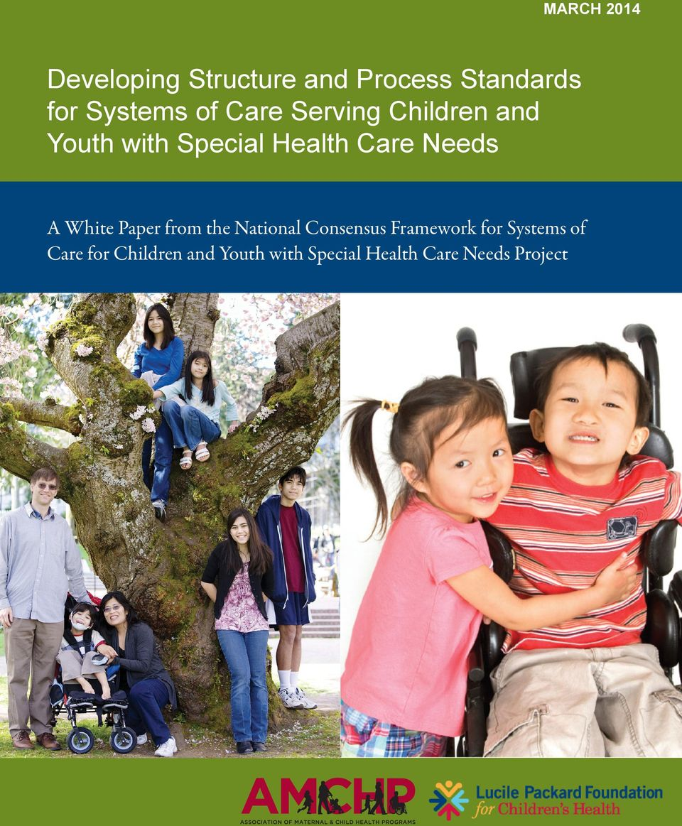 A White Paper from the National Consensus Framework for Systems of