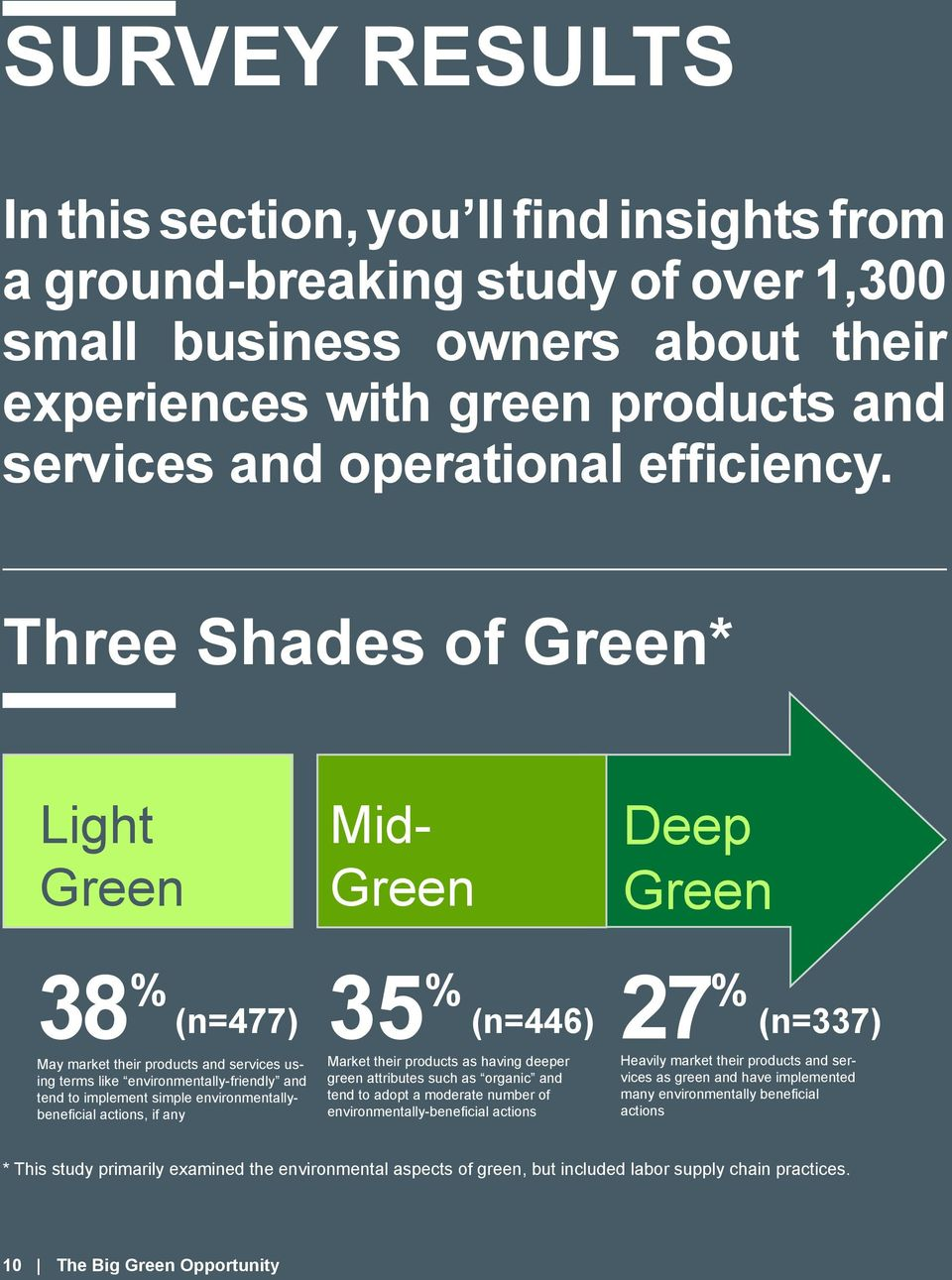 Three Shades of Green* Light Green Mid- Green Deep Green 38 % 35 % May market their products and services using terms like environmentally-friendly and tend to implement simple