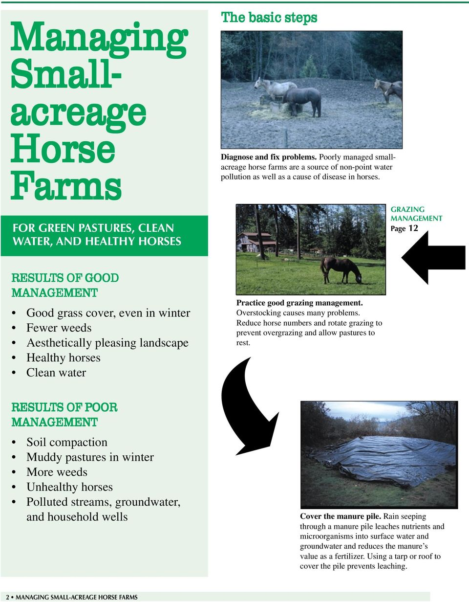 GRAZING MANAGEMENT Page 12 RESULTS OF GOOD MANAGEMENT Good grass cover, even in winter Fewer weeds Aesthetically pleasing landscape Healthy horses Clean water RESULTS OF POOR MANAGEMENT Soil