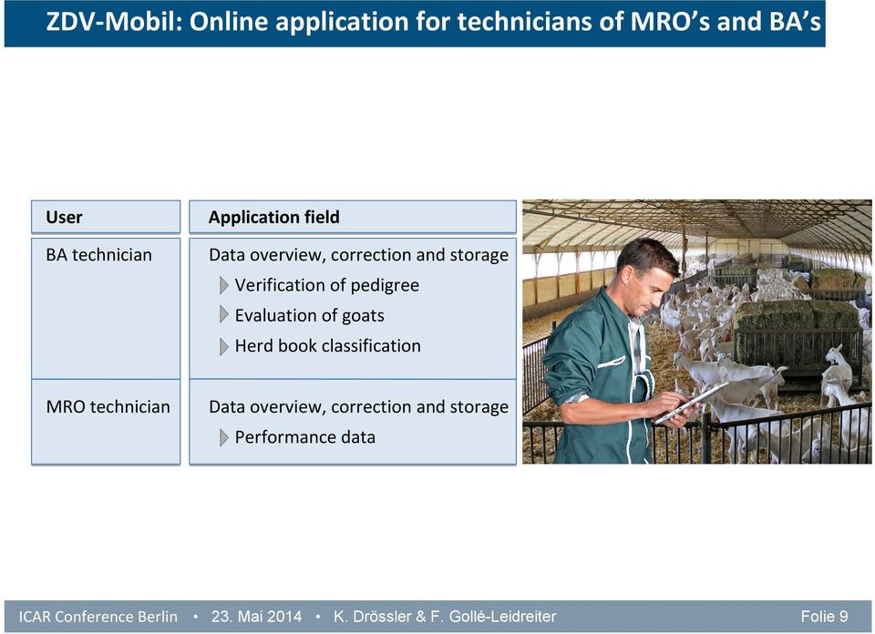 Evaluation of goats Herd book classification MRO technician Data overview, correction
